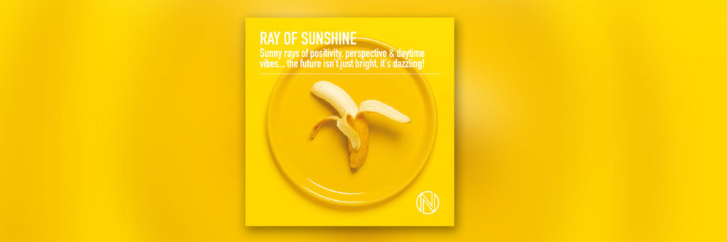 The album Ray of Sunshine by Meegan and Tobin as Scott Rockwell and Teddy Josephs